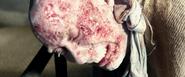 Caliban Burned (2)