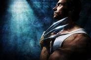 New Wolverine Image