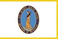 Flag of Brooklyn