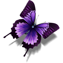 File:Other Butterfly.png