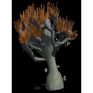 SPC PLANT006 300x300