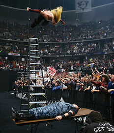 Hardy ladder swanton