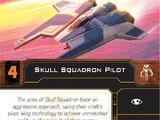 Skull Squadron Pilot