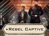 Rebel Captive