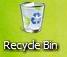 Recycle Bin Longhorn