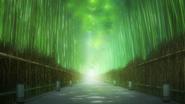 S2 Episode 2 Arashiyama Forest 2