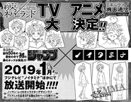 Volume 9 Anime Announcement
