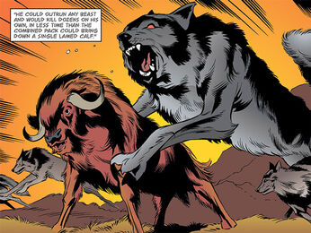Bigby Wolf Fables Willingham h4