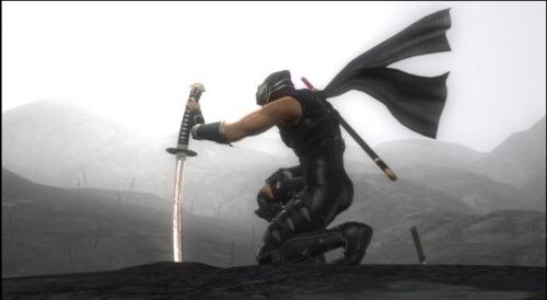Ninja graveyard