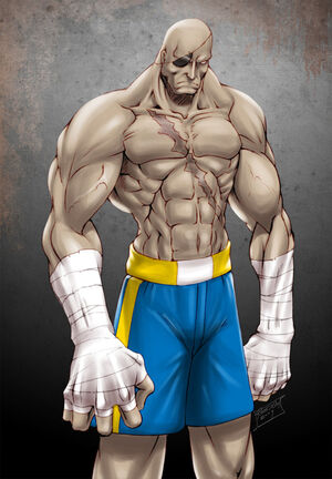 Street Fighter Sagat by gilas01