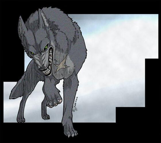 Tsume the grey wolf by kuraime