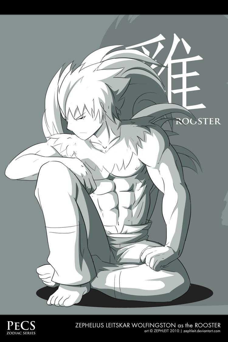 Pecs zodiac the rooster by zephleit-d31jmsu