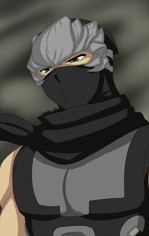 Ryu hayabusa by ninjaninjanoob23-d4skjxp.png