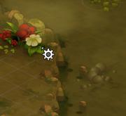 Eine Sumpfblume pflücken