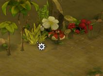 Sumpfpflanze