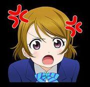 Angry Hanayo
