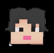Minecraft Hair
