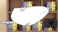 Culotte blanche ordinaire
