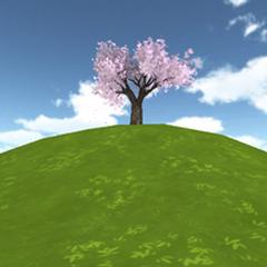 Nova colina da cerejeira