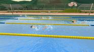 Члены клуба спорта плавают в бассейне