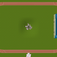 The track from above.