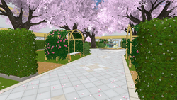 Plaza. New version