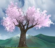 Drzewo zakochanych 13-9-18