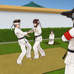 The Martial Arts Club practicing at one of the Japanese Gardens in-game.