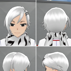Shiromi's in-game hairstyle.