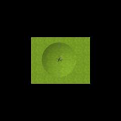 樹的鳥瞰圖 [15/11/2015]