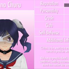 Quinto perfil de Supana.