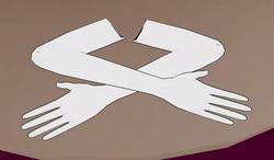 Rękawiczki 1