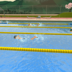 The Sports Club swimming in the pool.