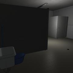 A Femalesu0027 Bathroom. January 15th, 2016.