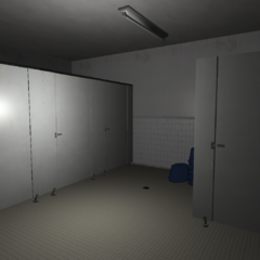 Incroyable A Femalesu0027 Bathroom. January 15th, 2016.