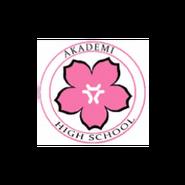Akademi High School logo