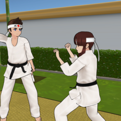 Sho sparring with Mina in one of the Japanese Gardens.