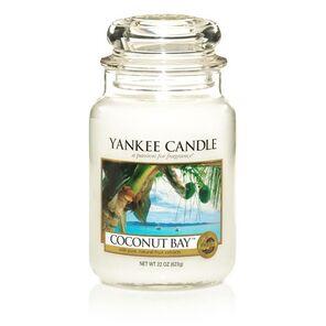 Yc coconut bay L 1003298 500
