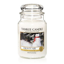 99-yankee-candle-frosty-air-25