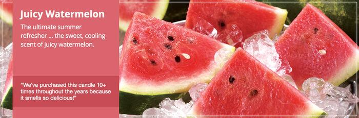 20150328 Juicy Watermelon Frag Fam Banner yankeecandle com