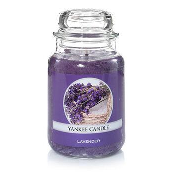 20150826 Lavender Lrg Jar yankeecandle com