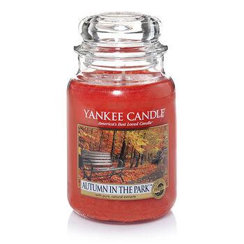 20150827 Autumn In The Park Lrg Jar yankeecandle com