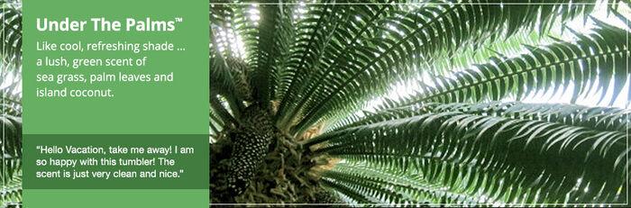 20150906 Under The Palms banner yankeecandle com