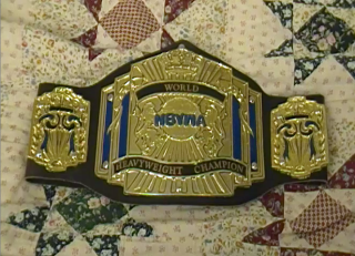 NBYWA World Heavyweight Championship 3 Small