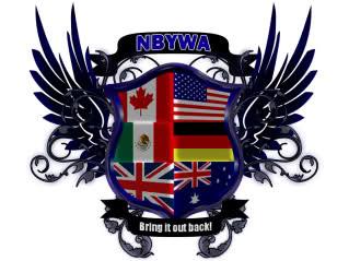 File:NBYWA International Heavyweight Championship Logo Small.jpg
