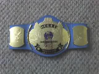THW Undisputed Championship Small