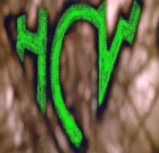 HCW Logo Small