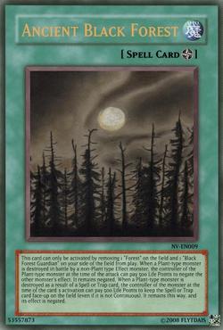 AncientBlackForest