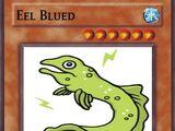 Eel Blued