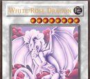 White Rose Dragon (Itsu)